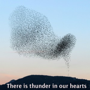 thunder_in_our_hearts