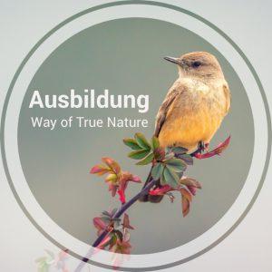 Ausbildung_Way_of_true_Nature
