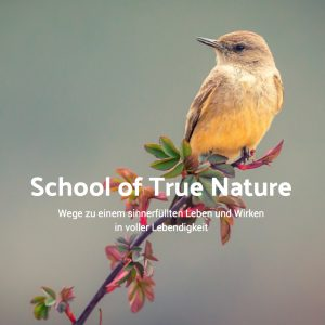 School_of_True_Nature