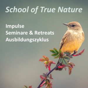 School_of_true_nature_Banner_Blog